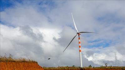 Đề nghị bổ sung dự án điện gió Thắng Lợi Đắk Lắk vào quy hoạch