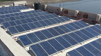 Ngành điện đã thanh toán cho khách hàng 905 tỷ đồng tiền mua ĐMTMN