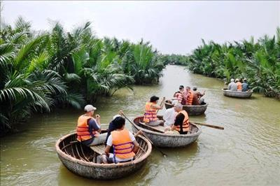 Bảo vệ rừng dừa nơi cửa biển