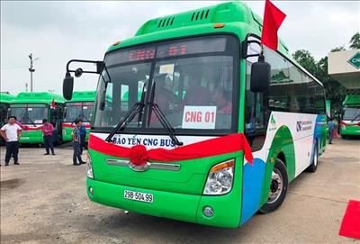 Hà Nội: Chính thức vận hành hai tuyến xe buýt sử dụng nhiên liệu sạch