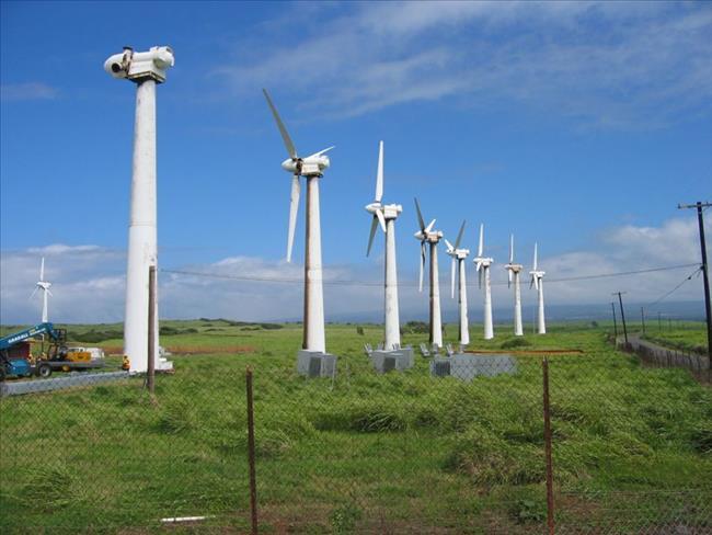 Trà Vinh chấp thuận các dự án điện gió gần 3.370 tỷ đồng