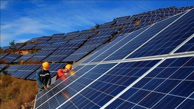 Khởi công dự án nhà máy điện mặt trời ở Long An