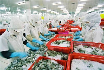 Các giải pháp năng lượng bền vững trong ngành chế biến gỗ và thủy hải sản ở Việt Nam
