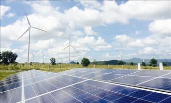 Bình Thuận có trên 90 dự án điện mặt trời đăng ký đầu tư
