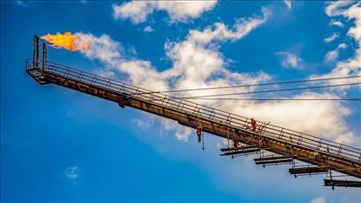 Petrovietnam tiếp tục đẩy mạnh công tác dự báo thị trường