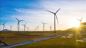 Chuyển nhượng 35,1% cổ phần Nhà máy điện gió Trung Nam
