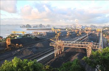 Công ty Indonesia lên kế hoạch xây dựng cảng than tại Việt Nam
