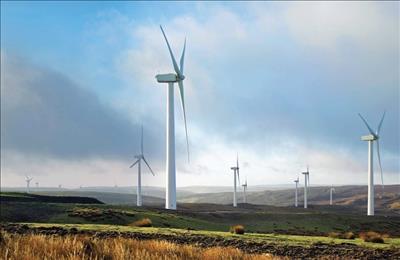 Bình Định đón nhận nhiều dự án năng lượng tái tạo