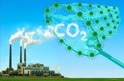 Lượng CO2 tăng cao nhất, chạm mốc 405,5ppm