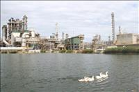 Nhà máy lọc dầu Dung Quất đạt danh hiệu Nhà máy Xanh thân thiện