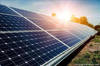 Việt Nam - Ấn Độ hợp tác phát triển năng lượng tái tạo