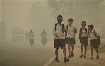 Ô nhiễm không khí làm rút ngắn tuổi thọ trẻ em