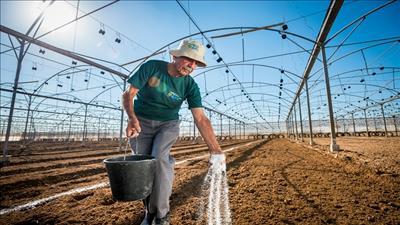 Mở rộng ứng dụng công nghệ hiện đại trong nông nghiệp của Israel tại ASEAN