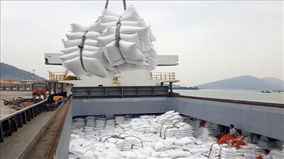Tiềm năng lớn trong xuất khẩu nông sản Việt Nam