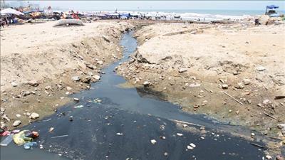 Bảo vệ hệ sinh thái trước ô nhiễm môi trường biển