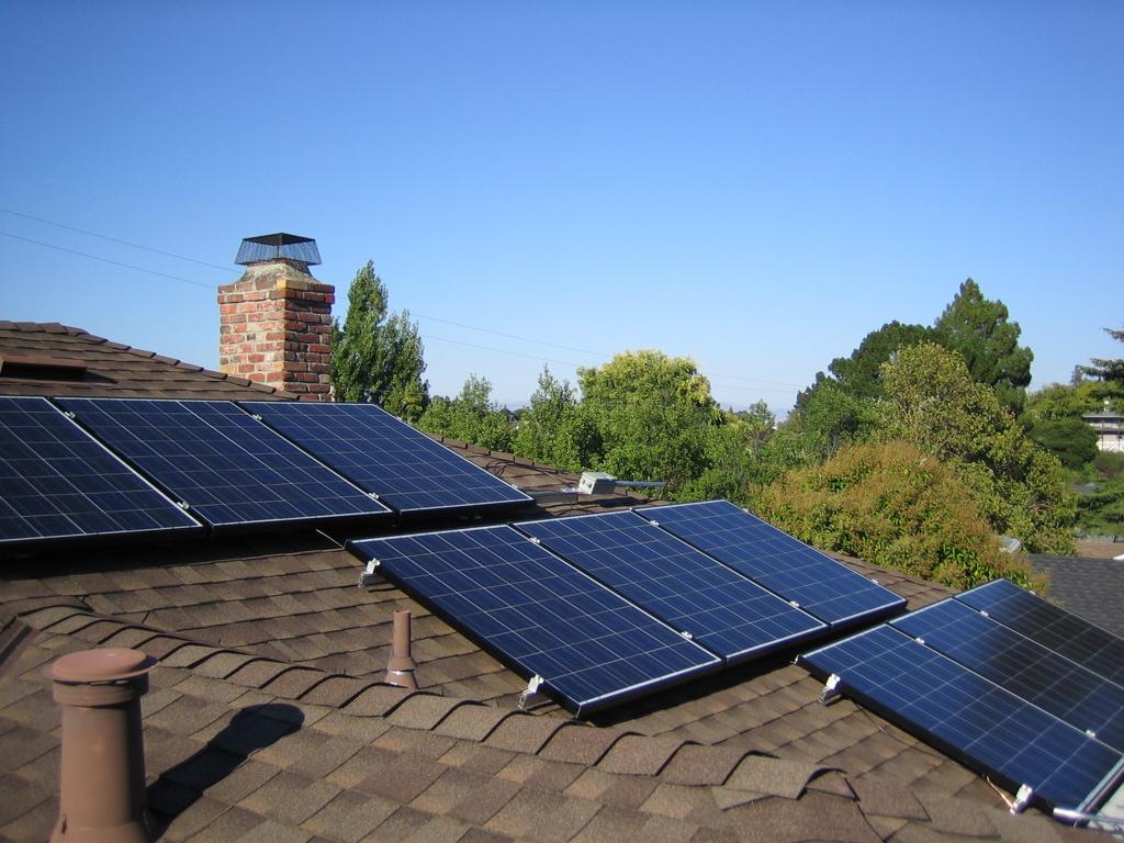 Pin mặt trời lấy năng lượng từ vi khuẩn