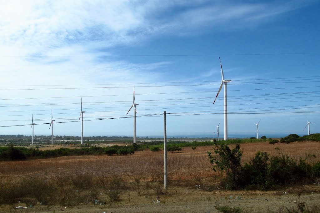 Nhà máy điện gió Mũi Dinh chính thức hòa lưới điện quốc gia